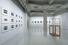 From GalleriesNow.net - Roland Flexner - Ai Weiwei @Massimo De Carlo, Hong Kong, Hong Kong