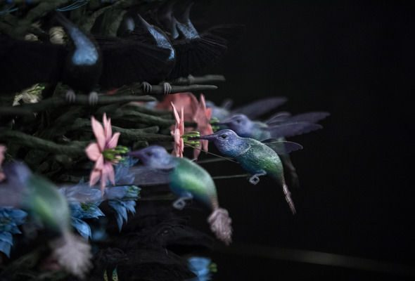 From GalleriesNow.net - Mat Collishaw: The Centrifugal Soul @Blain|Southern, Hanover Sq, London West End