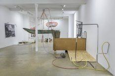 From GalleriesNow.net - Abraham Cruzvillegas: The Water Trilogy 1: Ichárhuta: Autodefensión Approximante Vibrante Retroflexe @Galerie Chantal Crousel, Paris