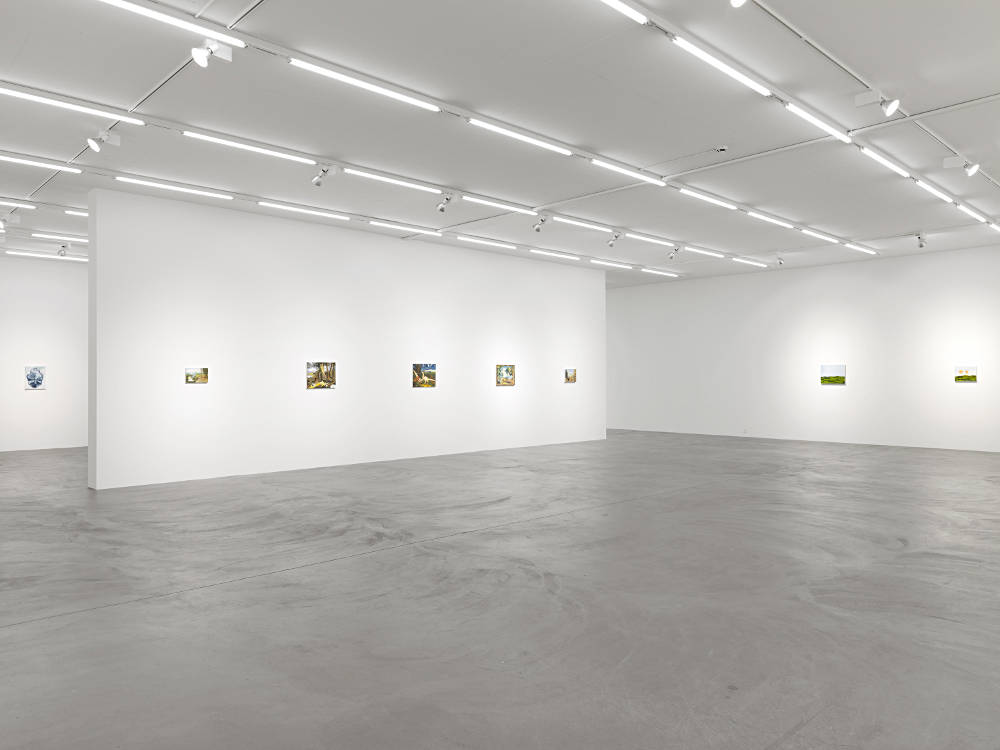 Galerie Eva Presenhuber Lowenbrau Karen Kilimnik 6