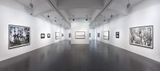 From GalleriesNow.net - Axel Hütte: Rheingau @Galerie Nikolaus Ruzicska, Salzburg