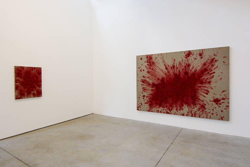 Luciana Brito Galerie Bosco Sodi 2