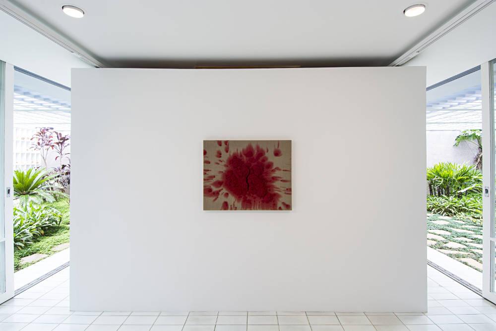 Luciana Brito Galerie Bosco Sodi 5