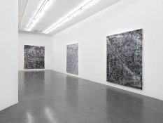 From GalleriesNow.net - Garth Weiser @Simon Lee London, London