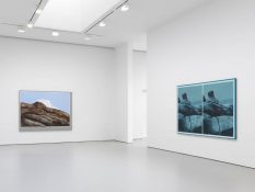 From GalleriesNow.net - Llyn Foulkes @David Zwirner 19th St, New York Chelsea