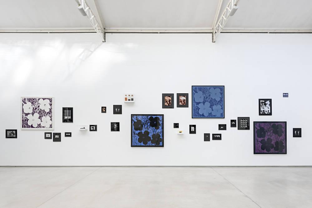 Galerie Thaddaeus Ropac Marais Sturtevant 3