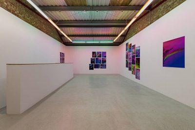 From GalleriesNow.net - Signe Pierce: Faux Realities @Annka Kultys Gallery, London