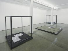 From GalleriesNow.net - Tom Burr: Stages @Maureen Paley, London