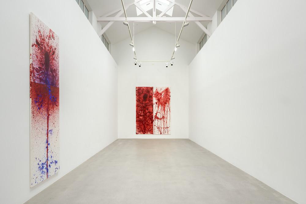 Galerie Thaddaeus Ropac Pantin Imran Qureshi 5