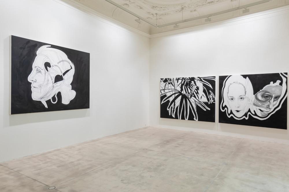 Galerie Krinzinger Franz Graf 5