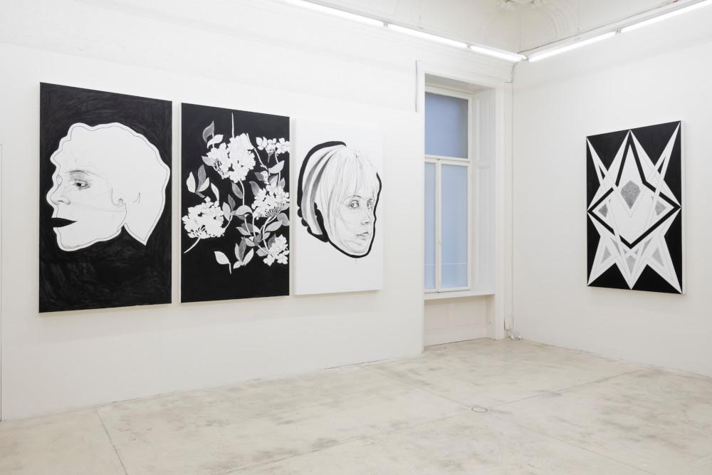 Galerie Krinzinger Franz Graf 7