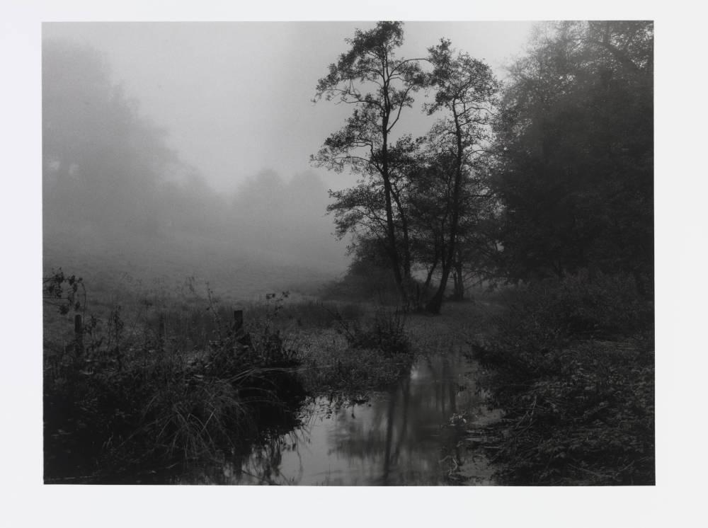 The River Alham that runs through my village in Somerset