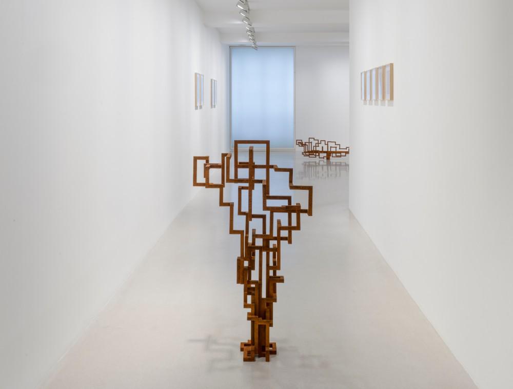 Galerie Thaddaeus Ropac Marais Antony Gormley 5