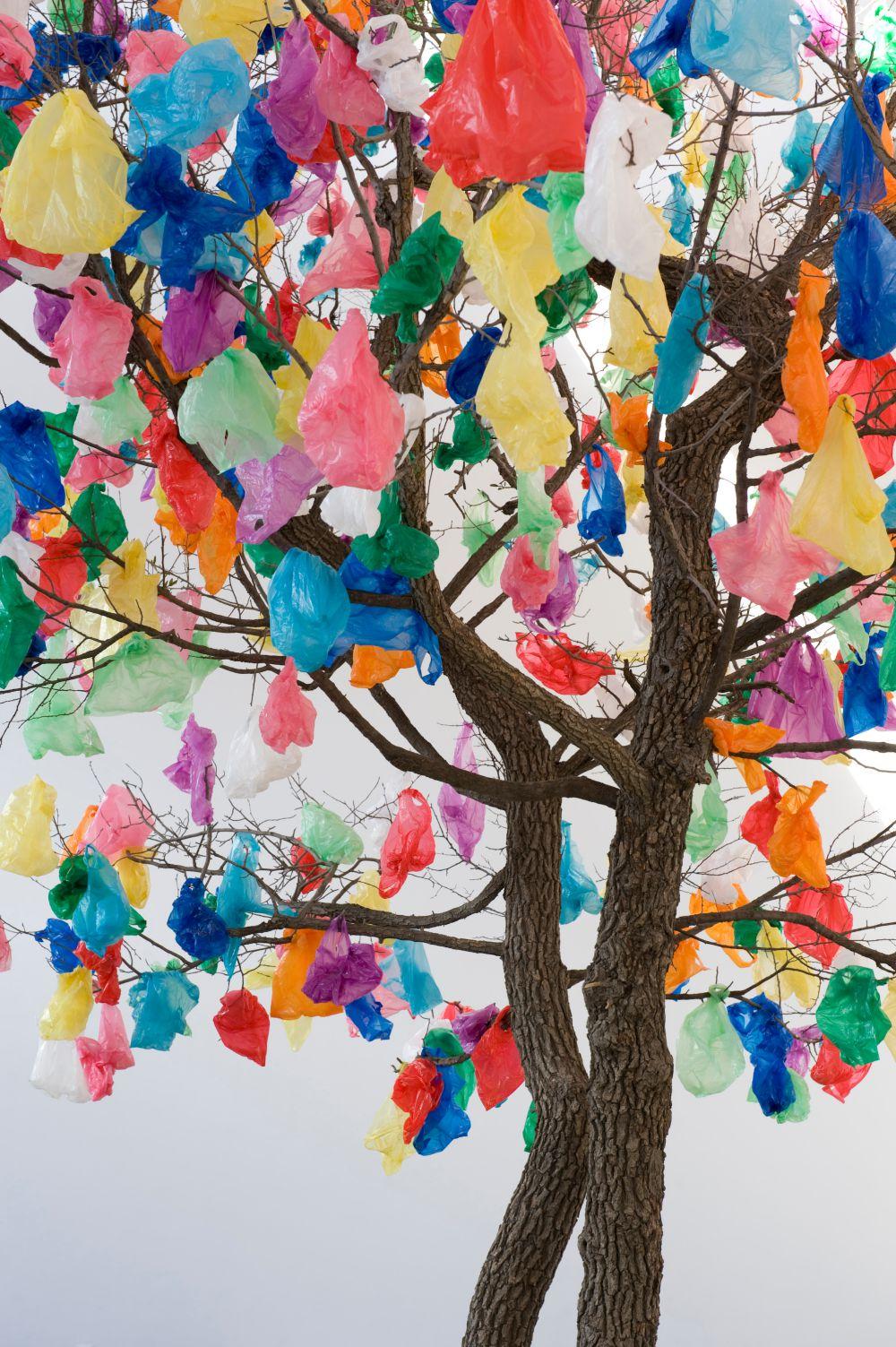 Plastic Tree B