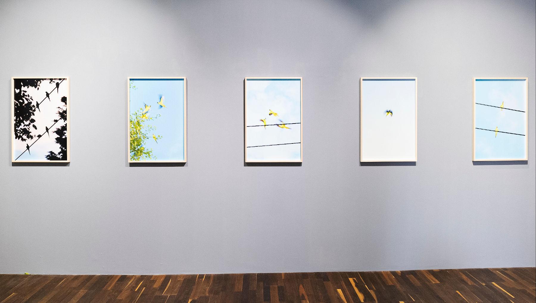 Christophe Guye Galerie Yoshinori Mizutani 1