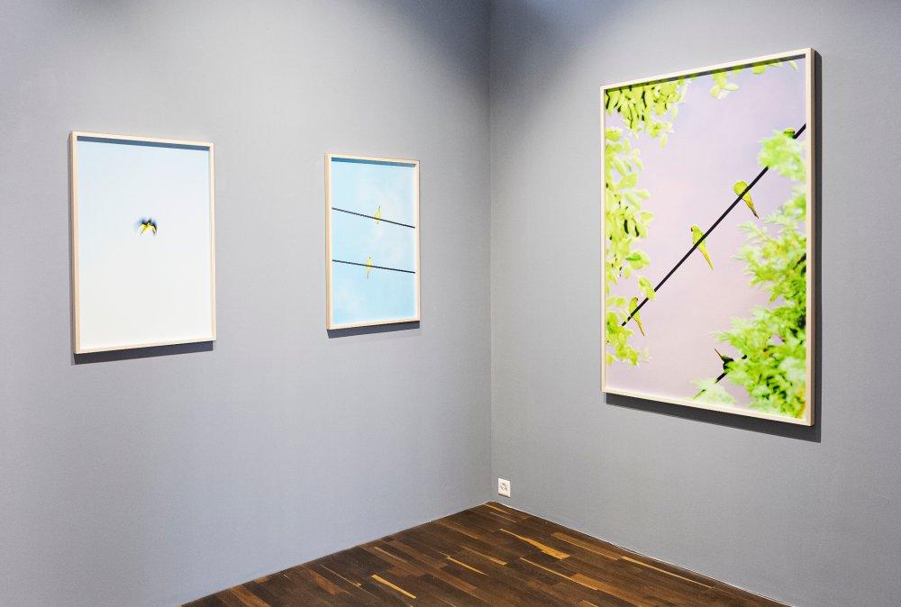 Christophe Guye Galerie Yoshinori Mizutani 4