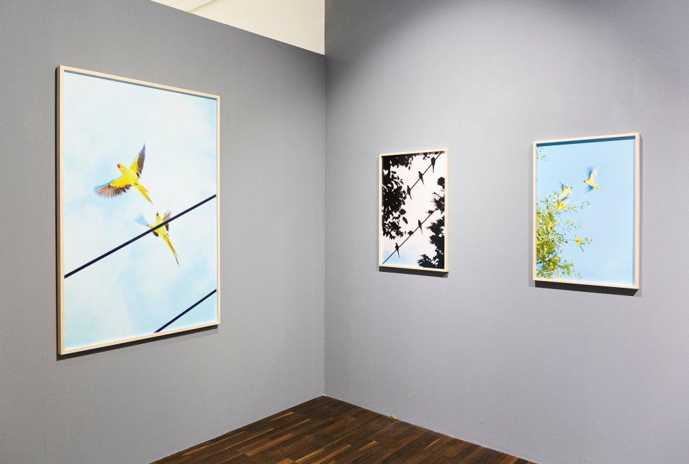 Christophe Guye Galerie Yoshinori Mizutani 5