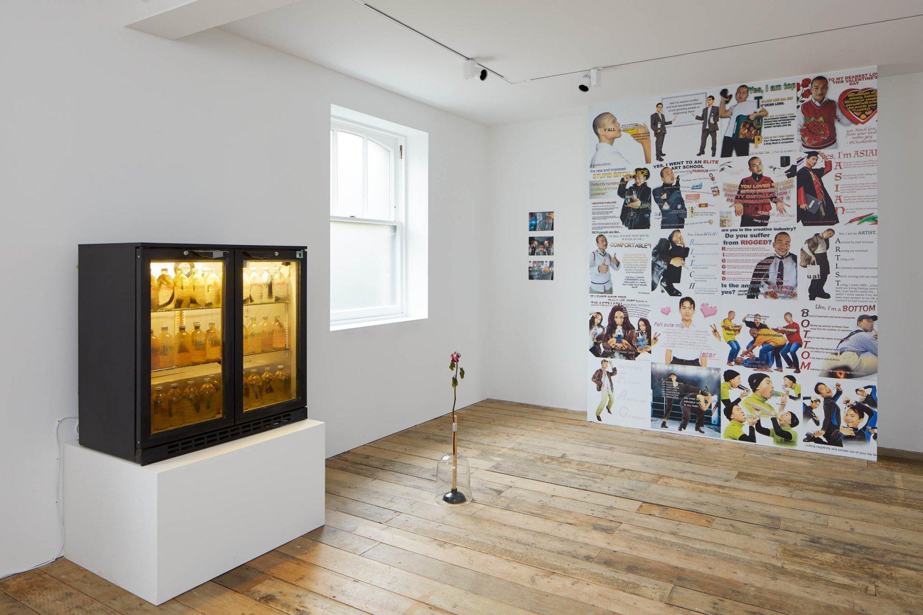 South London Gallery Working Progress 1