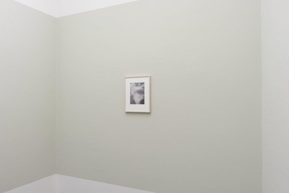 Mai 36 Galerie Jitka Hanzlova 13