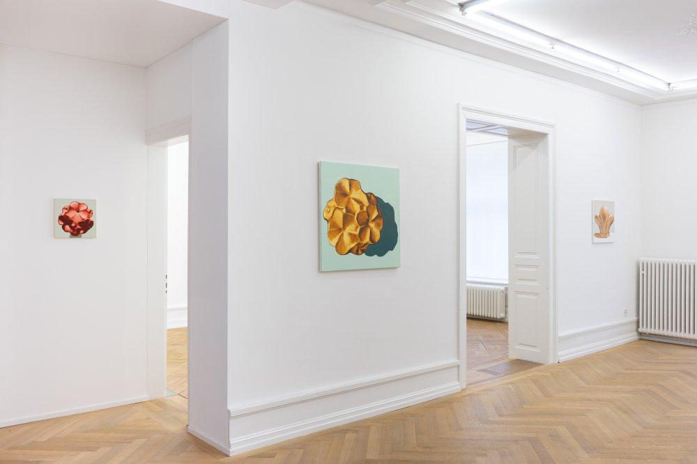 Mai 36 Galerie Michel Perez Pollo 11