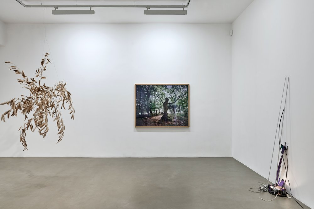 Galerie Chantal Crousel DEMAIN EST LA QUESTION 2