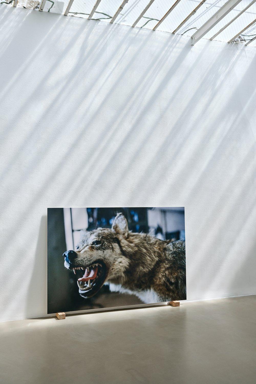 Galerie Chantal Crousel DEMAIN EST LA QUESTION 8