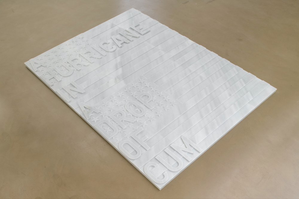 untitled 2020 (a hurricane in a drop of cum) (two flags, 1962)