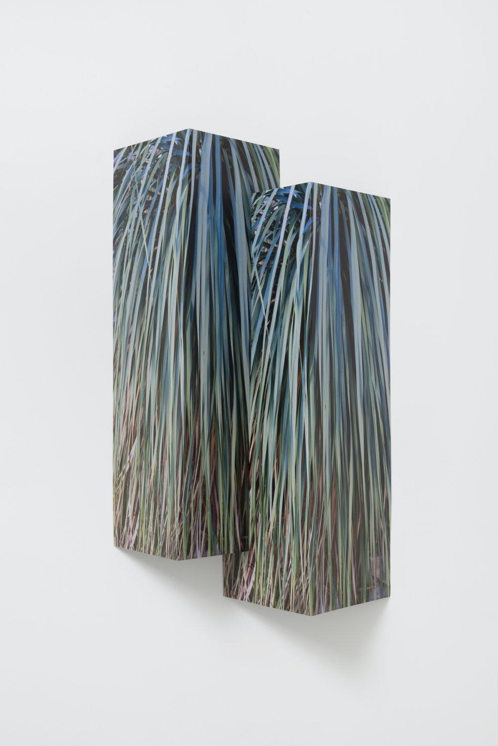 Double Palms Steel Fold
