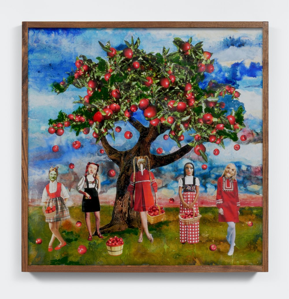 Gathering Apples on a Sunny Day