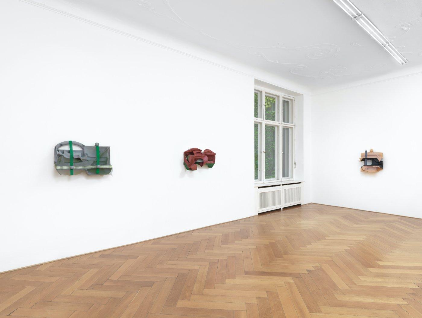 Galerie Buchholz Berlin Vincent Fecteau 8