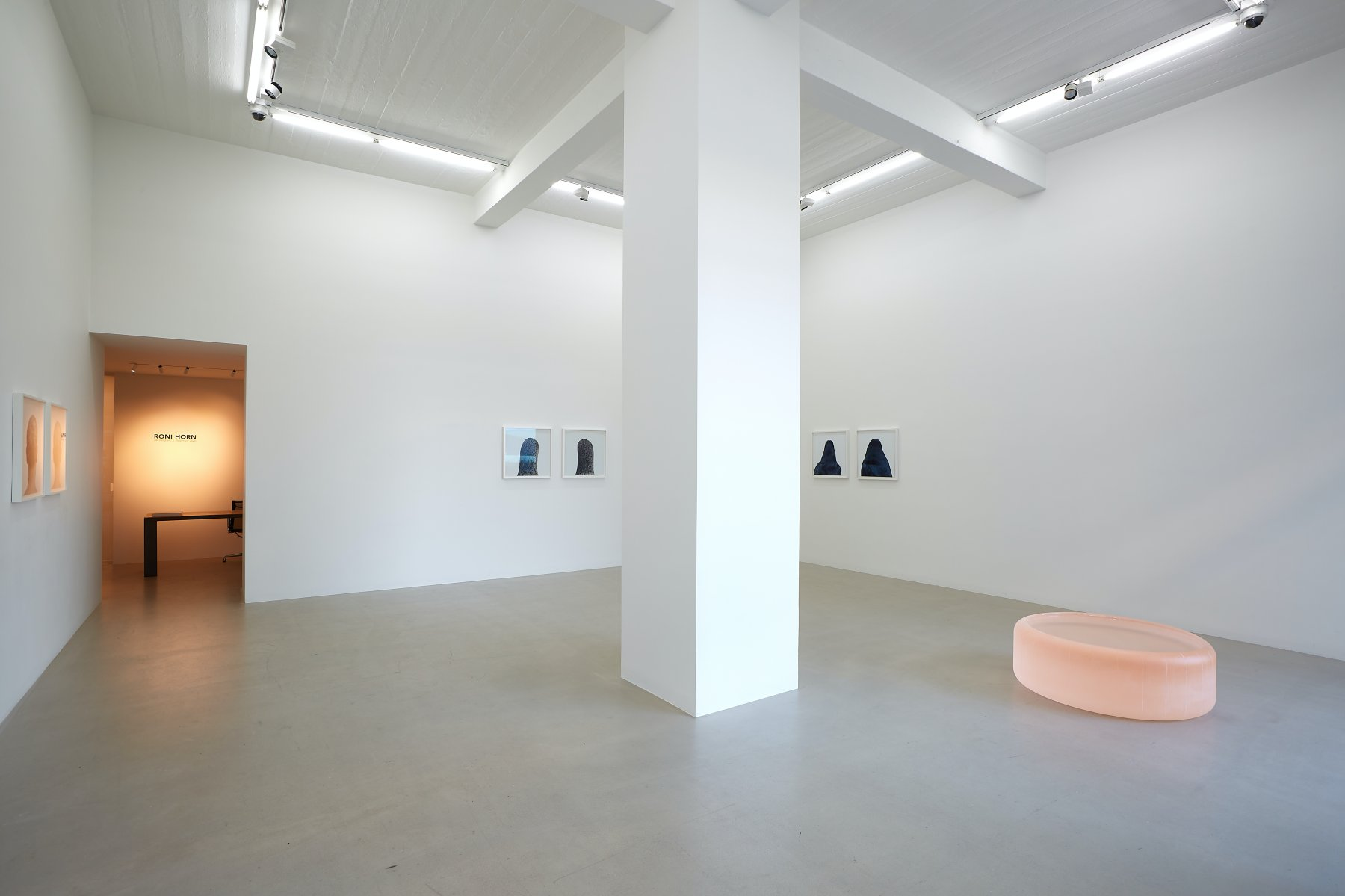 i8 Gallery Roni Horn 1
