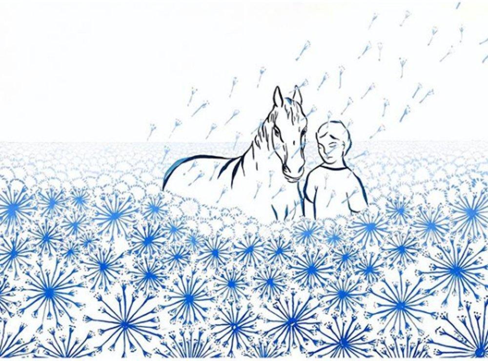 Dandelions Dream