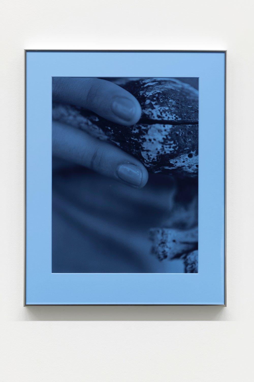 Pacific Driftwood (Blue Filter)