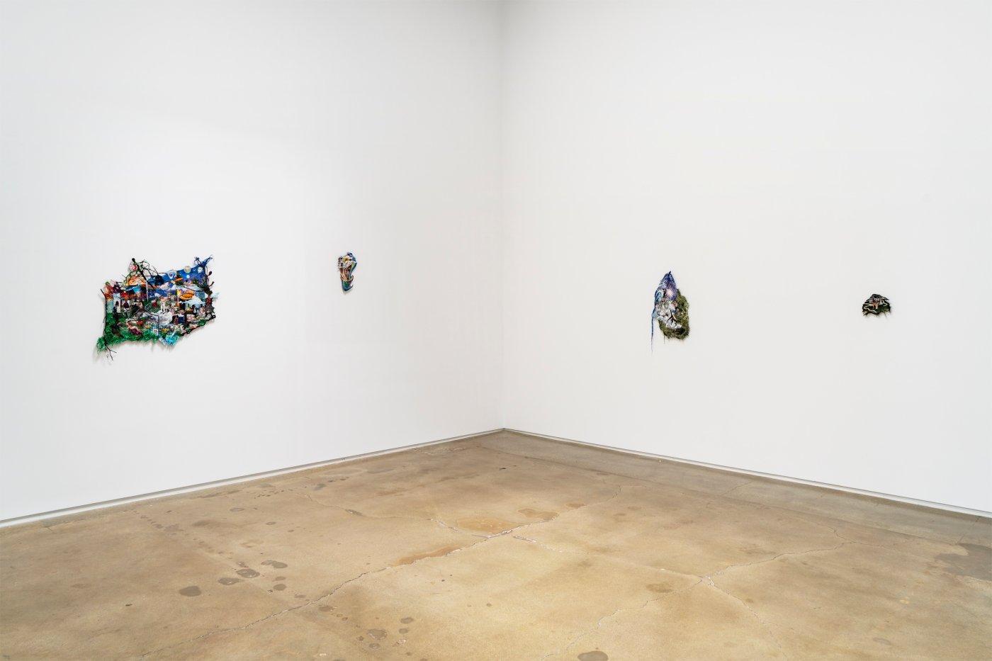 Kohn Gallery Sophia Narrett 4