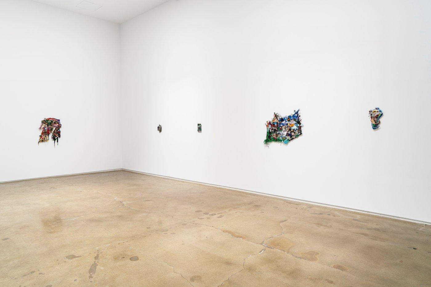 Kohn Gallery Sophia Narrett 7