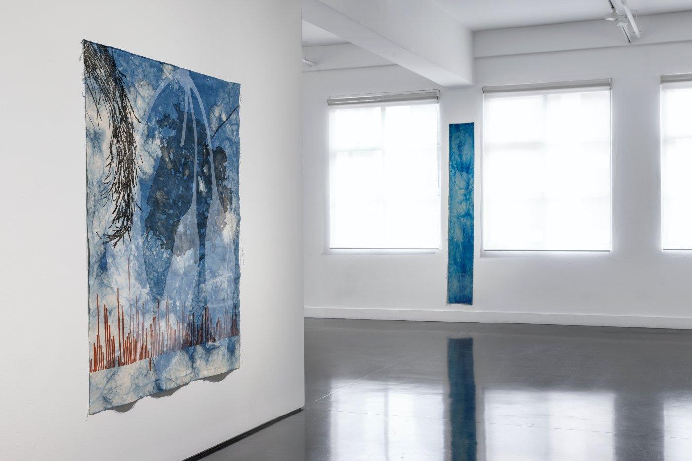 Tolarno Galleries Judy Watson 4