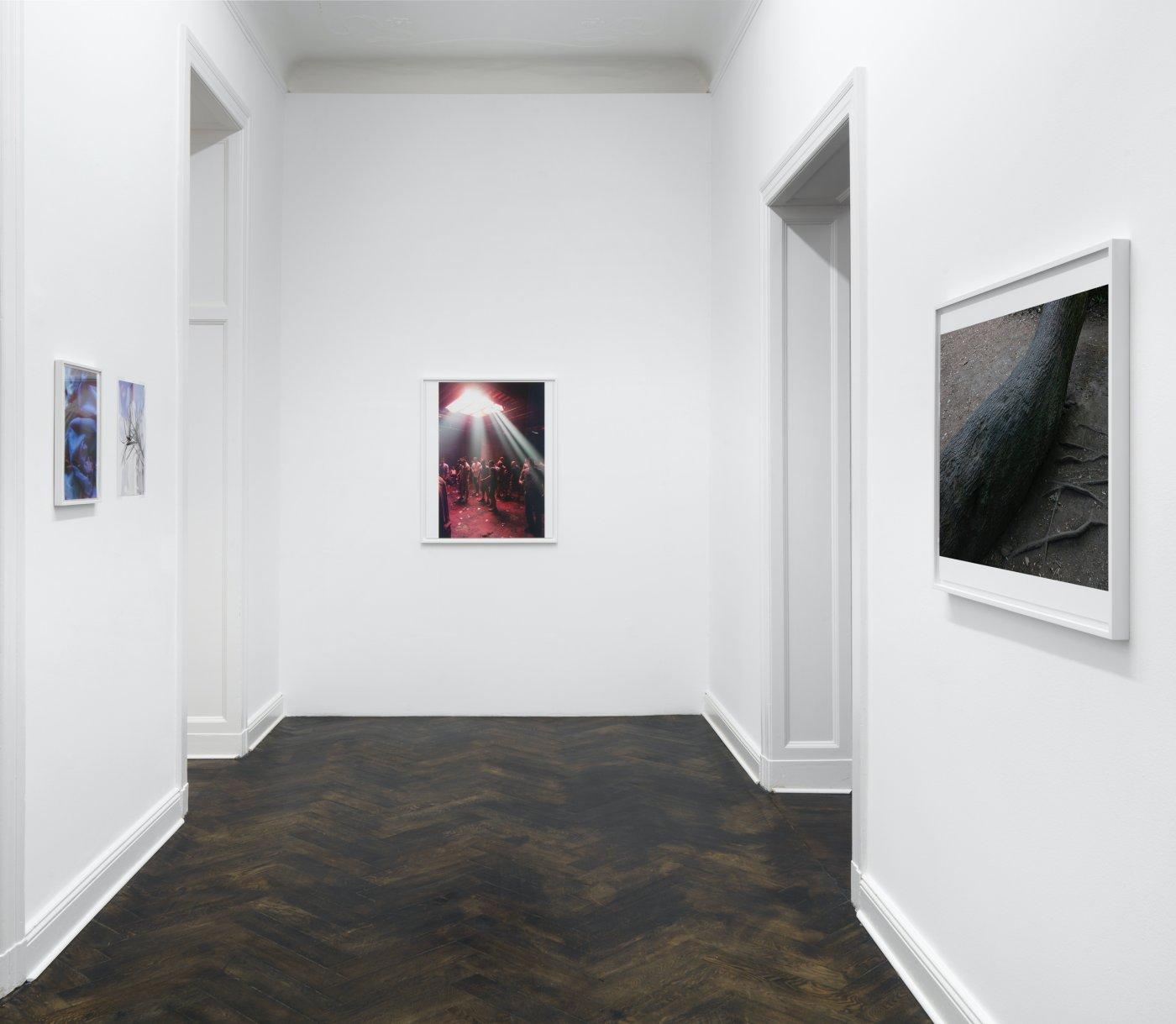 Galerie Buchholz Berlin Wolfgang Tillmans 11