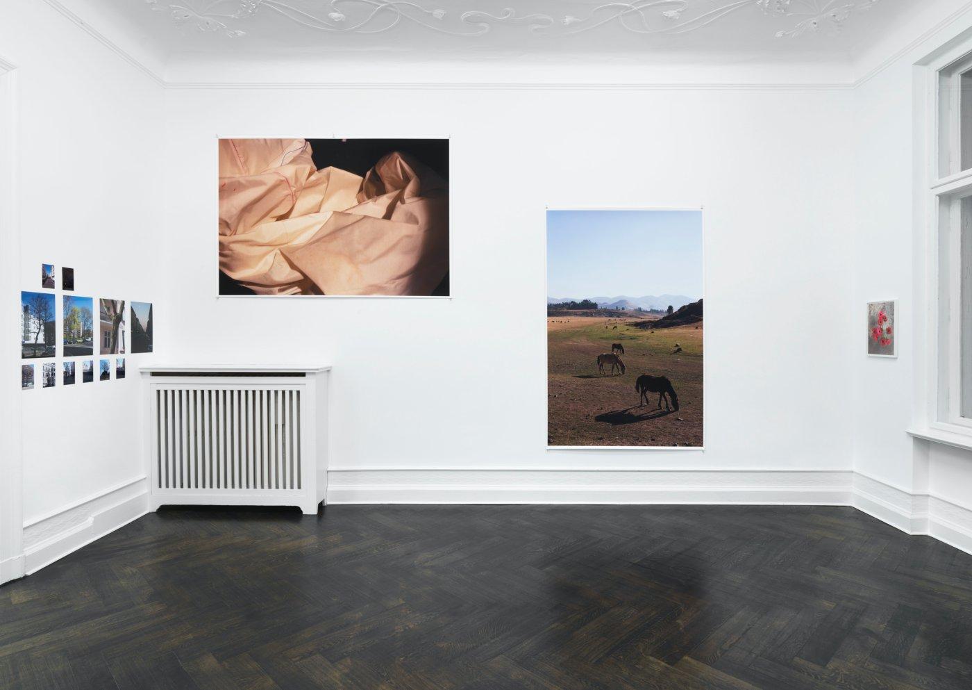 Galerie Buchholz Berlin Wolfgang Tillmans 16