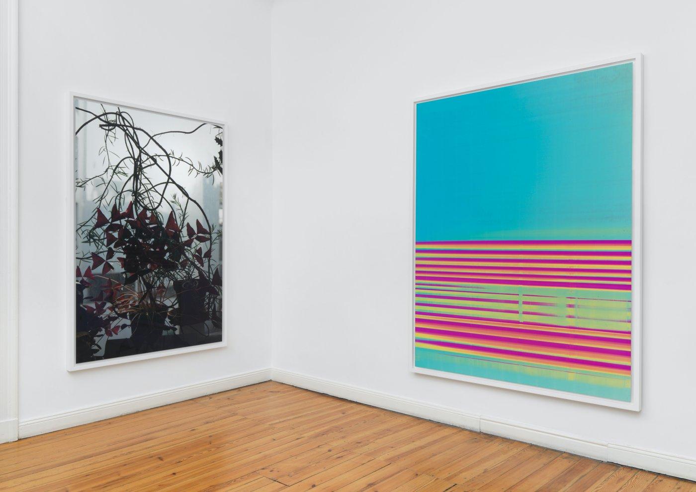 Galerie Buchholz Berlin Wolfgang Tillmans 3