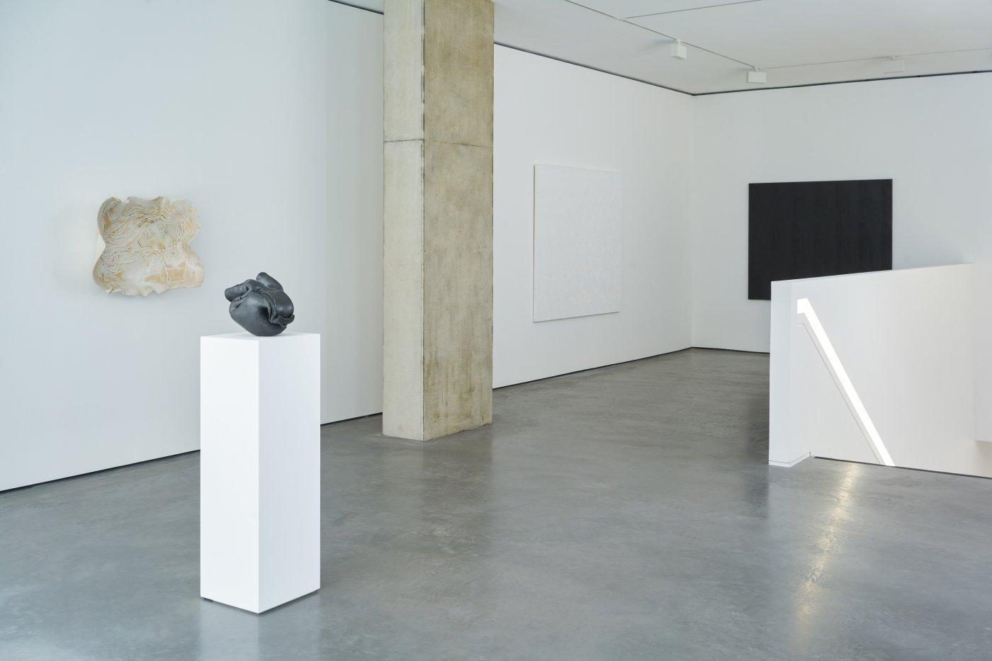 Goodman Gallery Ghada Amer 4