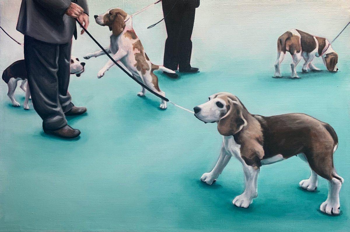 Flock of Beagles