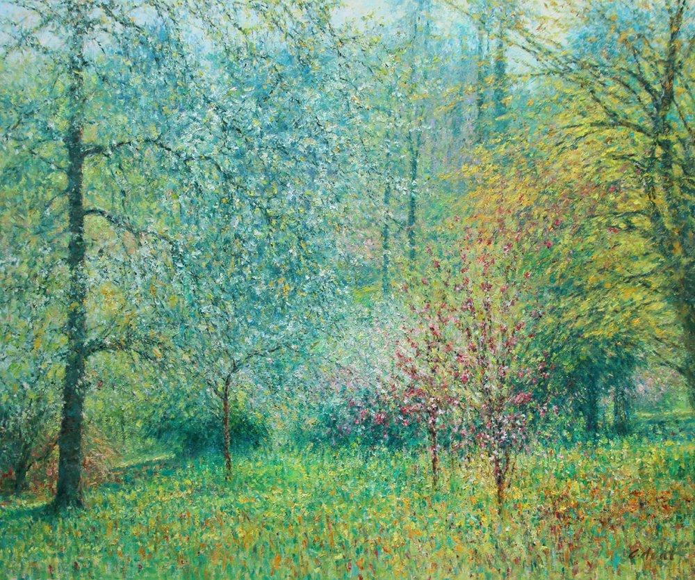 The Duchess Garden - Spring