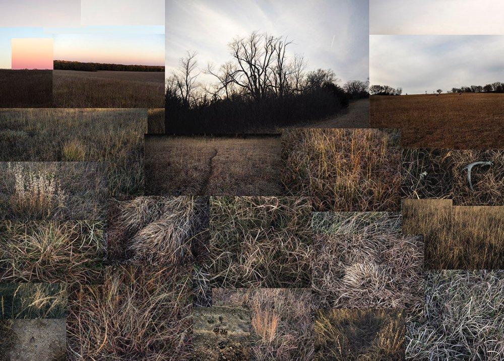 Fent's Prairie, near Salina, Kansas, Winter
