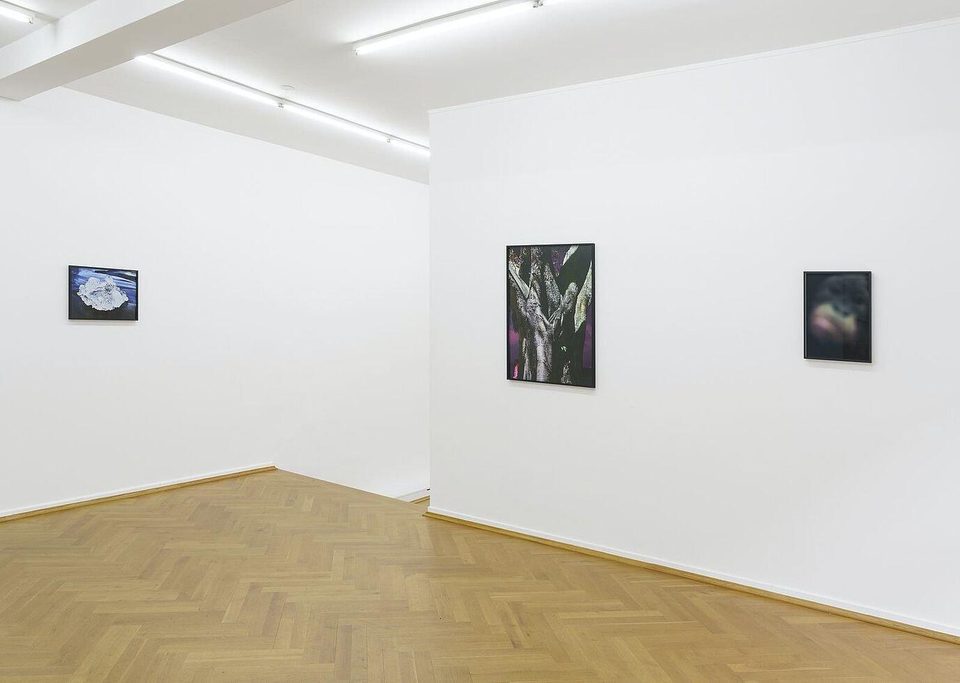 Bernhard Knaus Flo Maak 5