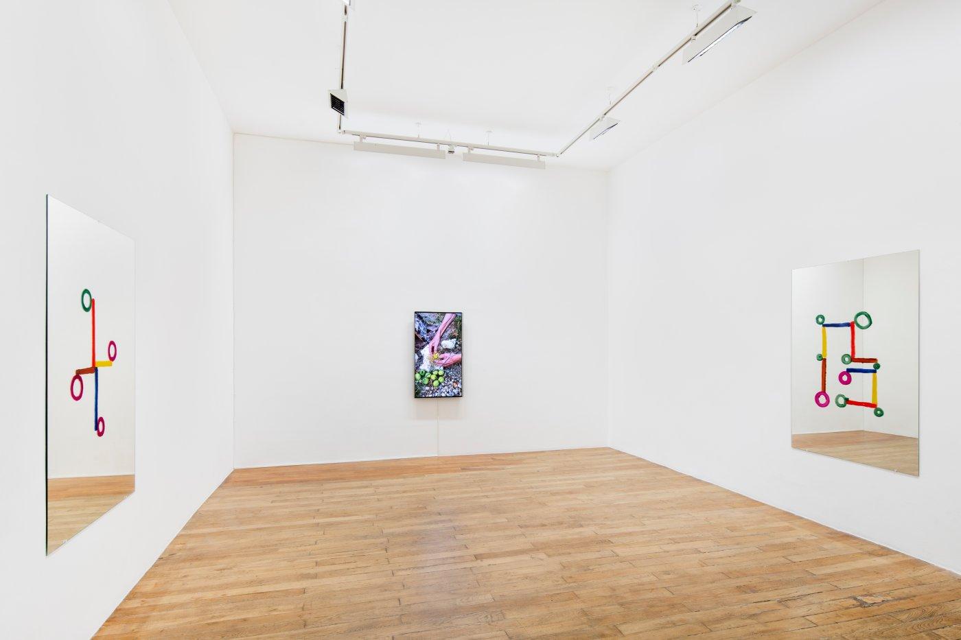 Galerie Chantal Crousel Abraham Cruzvillegas 4