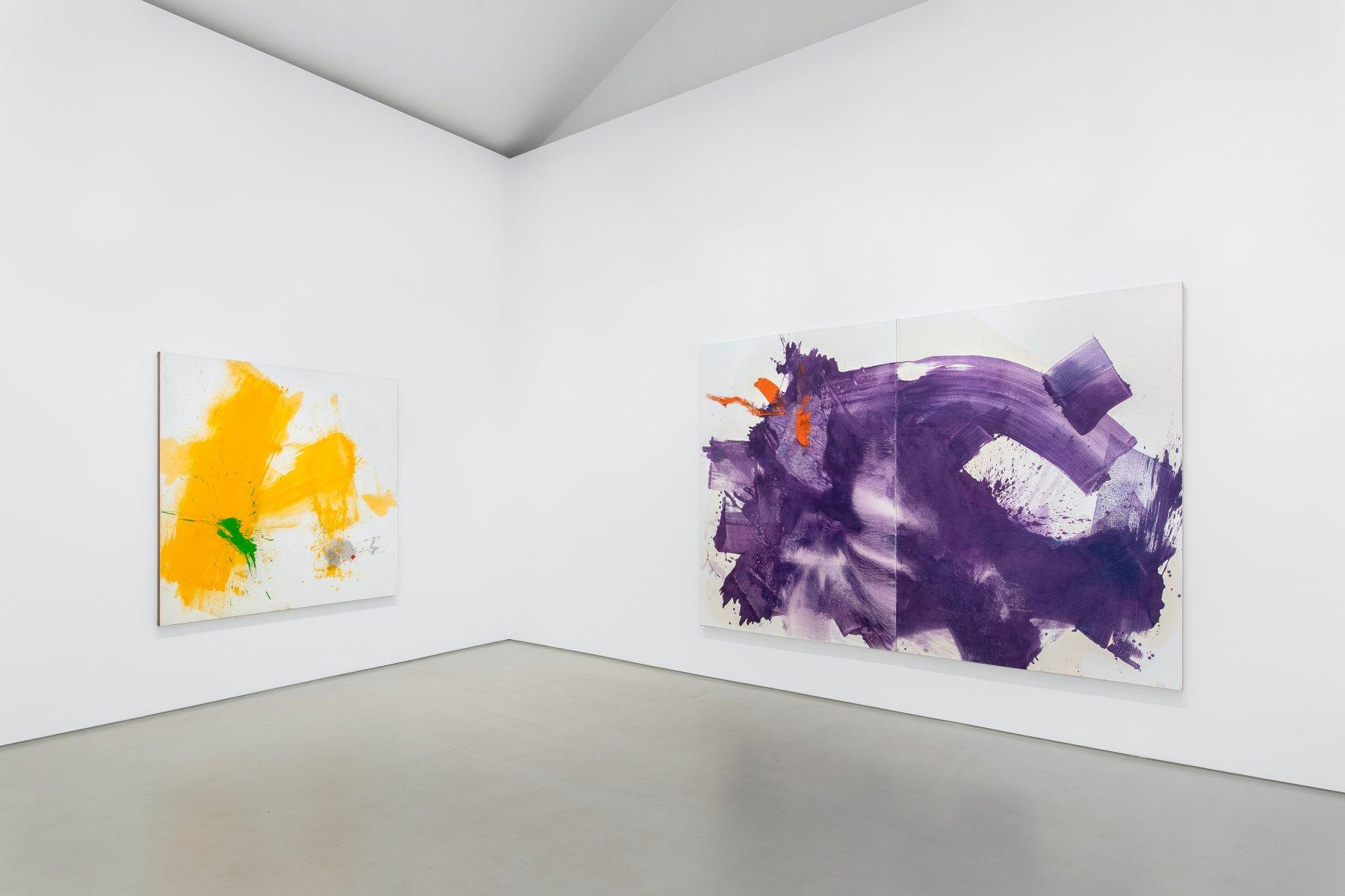 Galerie Max Hetzler Paris Zhang Wei 1