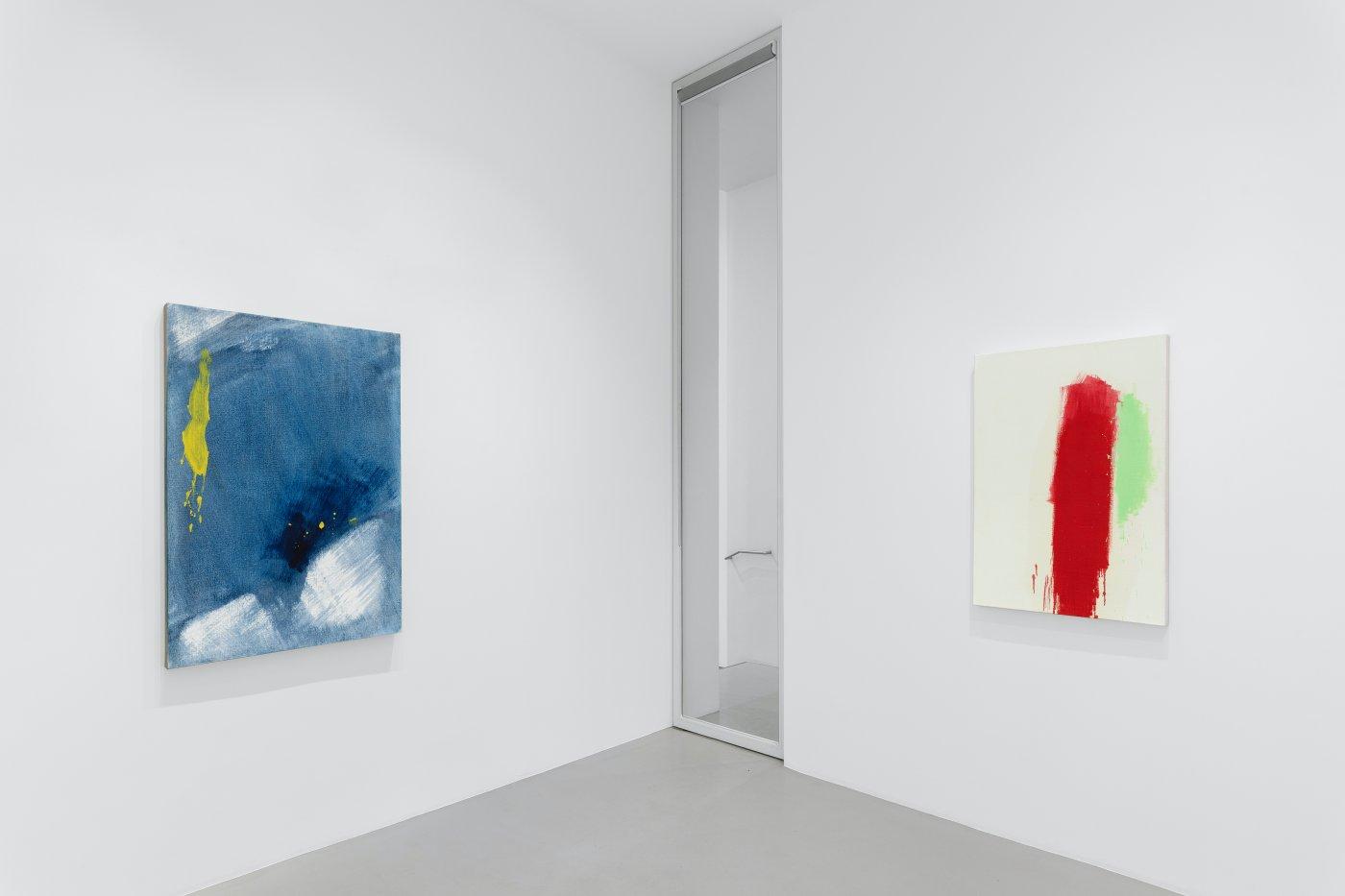 Galerie Max Hetzler Paris Zhang Wei 6