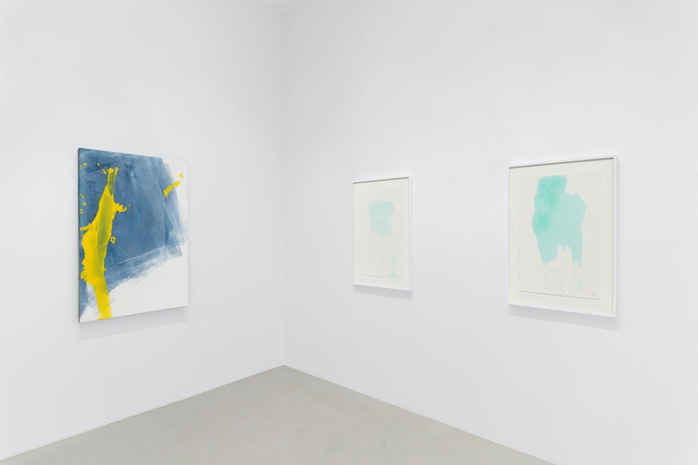 Galerie Max Hetzler Paris Zhang Wei 7