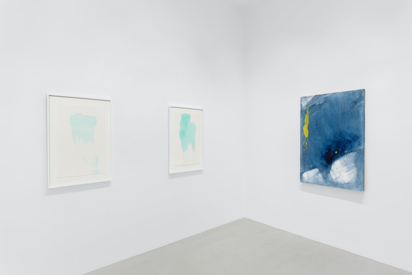 Galerie Max Hetzler Paris Zhang Wei 8