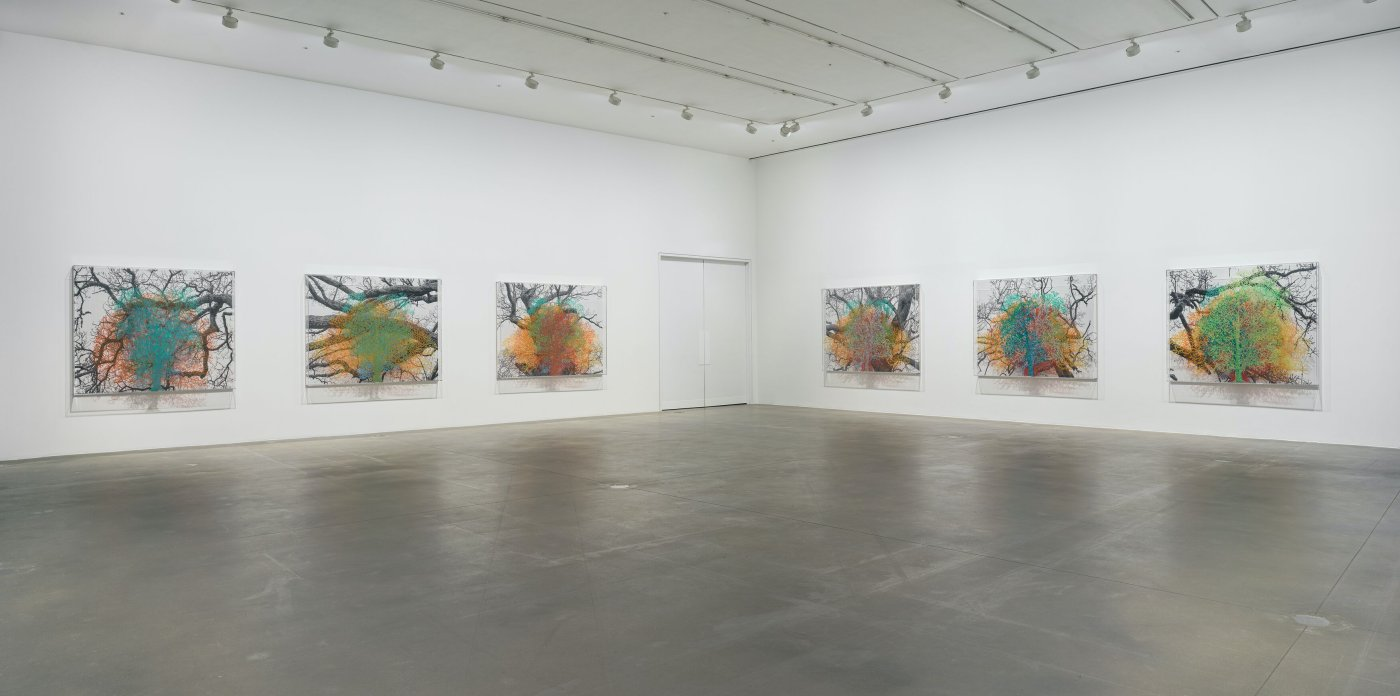 Hauser Wirth London Charles Gaines 8